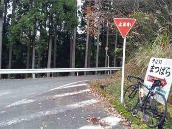 保津峡15.11.23_9_20.jpg