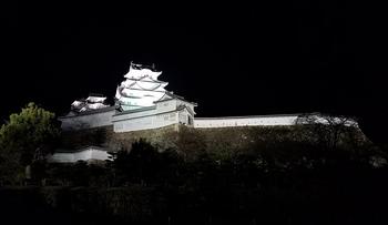 夜桜会4_40.jpg