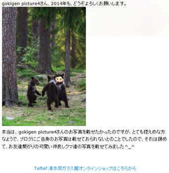仲良しクマ.jpg