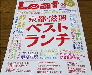 Leaf06_1_40.jpg